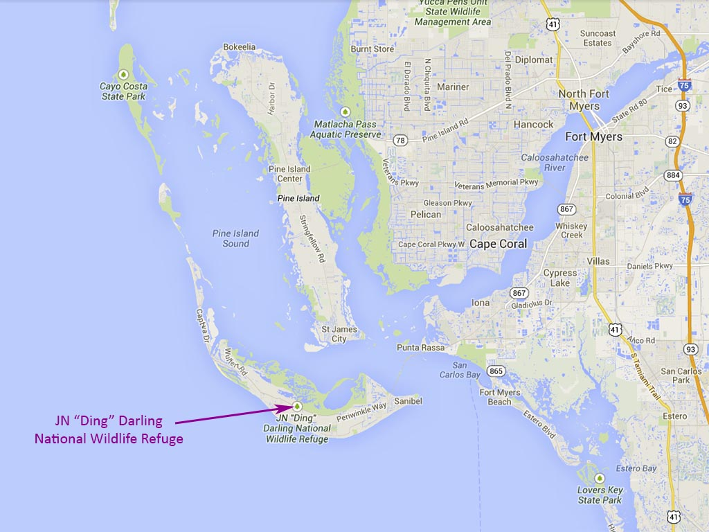 Cycling Trails Nearby Sanibel Island, A Top-Notch Tourist